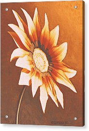 Acrylic Print featuring the painting Rusty Gazania by Sophia Schmierer