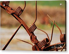 Rusty Tines Acrylic Print by Mary Carol Story