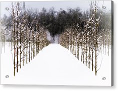 Acrylic Print featuring the photograph Ruths Winter Scene by Russell Styles