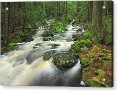 Rutland Brook High Water Acrylic Print