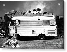 Rv Trailer Park 5d22705 Black And White Acrylic Print by Wingsdomain Art and Photography