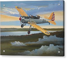 Ryan Pt-22 Recruit Acrylic Print by Stuart Swartz