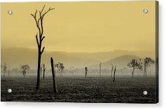 S P I R I T  Land Acrylic Print by Holly Kempe