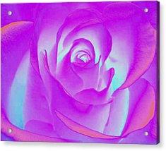 Sabattier Rose Acrylic Print