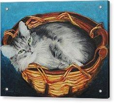 Sabrina In Her Basket Acrylic Print