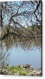 Fall At Sacramento River Scenic Photography Acrylic Print