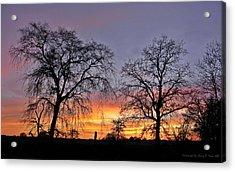 Sacramento Sunset Acrylic Print by Sherry Flaker
