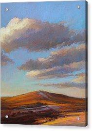 Sacred Dune Acrylic Print by Ed Chesnovitch