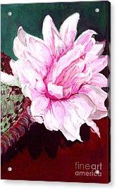 Acrylic Print featuring the painting Sacred Pink Lotus  by Mukta Gupta