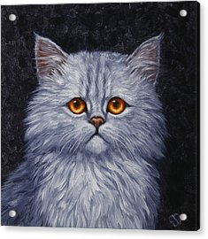 Sad Kitty Acrylic Print by Crista Forest