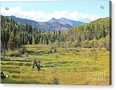 Saddle Mountain Acrylic Print