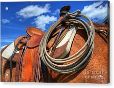 Saddle Up Acrylic Print by Bob Christopher