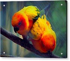 Safari Birds Acrylic Print by Sarode Nimmanwattana