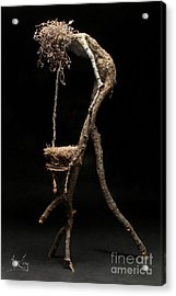 Safe Haven Acrylic Print by Adam Long
