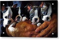 Safe In The Arms Of Love - Puppy Art Acrylic Print