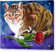 Saffron Acrylic Print by Sherry Shipley