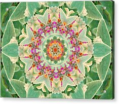 Sage Flower Mandala Acrylic Print