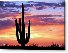 Saguaro At Sunset Acrylic Print