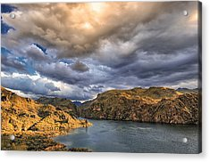 Acrylic Print featuring the photograph Saguaro Storms by Anthony Citro