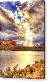 Acrylic Print featuring the photograph Saguaro Sun Rays  by Anthony Citro