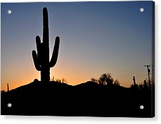 Saguaro Sunset Acrylic Print by Diane Lent