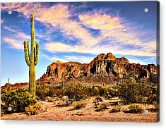 Saguaro Superstition Mountains Arizona Acrylic Print by Bob and Nadine Johnston
