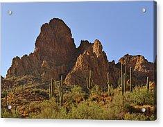 Saguaros - Symbol Of The Desert Southwest Acrylic Print by Christine Till