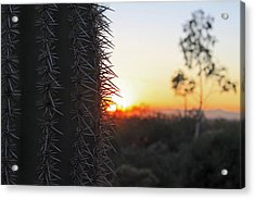 Acrylic Print featuring the photograph Sagurao Sunset by Gary Kaylor
