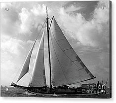 Sail By Acrylic Print