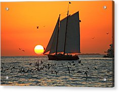 Sail Into The Sunset Acrylic Print