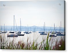 Sailboats At Rest Acrylic Print by Bill Cannon