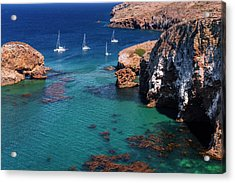 Sailboats At Scorpion Cove, Santa Cruz Acrylic Print