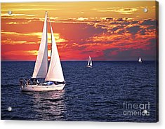 Sailboats At Sunset Acrylic Print by Elena Elisseeva