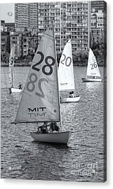Sailboats On The Charles River II Acrylic Print by Clarence Holmes