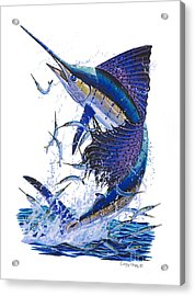 Sailfish Acrylic Print by Carey Chen