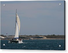 Acrylic Print featuring the photograph Sailing Across The Water by Phoenix De Vries