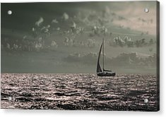 Sailing Acrylic Print by Akos Kozari