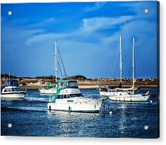 Sailing Acrylic Print by Camille Lopez