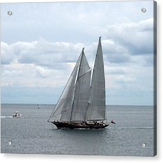 Sailing Day Acrylic Print by Catherine Gagne