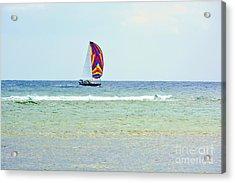 Sailing Day Acrylic Print by Darla Wood