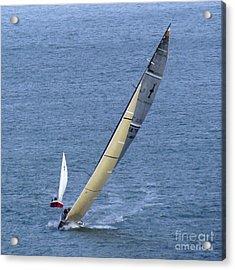 Sailing Fun Acrylic Print by Scott Cameron