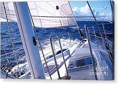 Sailing Hawaii Acrylic Print by Joseph J Stevens