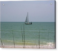 Acrylic Print featuring the photograph Sailing In The Gulf by D Hackett