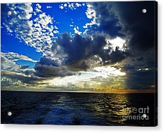 Sailing North Acrylic Print by Alison Tomich