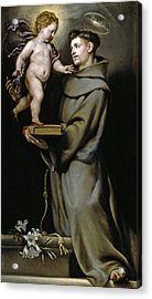 Saint Anthony Of Padua Acrylic Print
