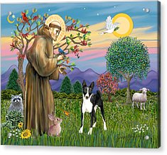 Saint Francis Blesses A Black And White Basenji Acrylic Print by Jean Fitzgerald