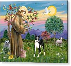Saint Francis Blesses A Black And White Basenji Acrylic Print