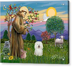 Saint Francis Blesses A Bolognese Acrylic Print by Jean B Fitzgerald