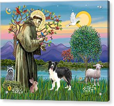 Saint Francis Blesses A Border Collie Acrylic Print by Jean Fitzgerald