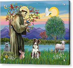 Saint Francis Blesses A Brown And White Border Collie Acrylic Print